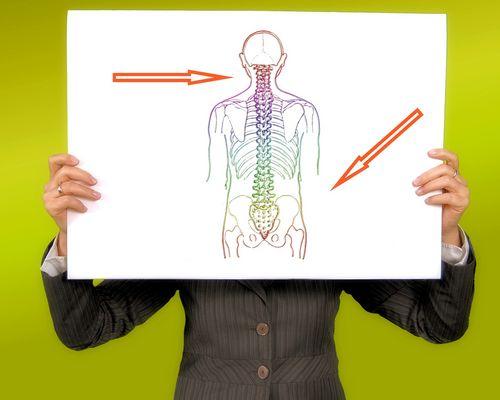 Reversus U ermöglicht Ihnen einen Einblick in die Hintergründe des Rückentraining/Faszientraining/funktionellen Training